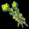 Hyrule Herb